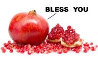 Pomegranate Sneeze