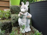 Lovely 'old' garden creature☺☺