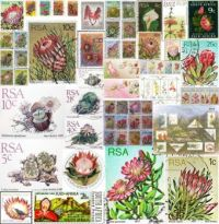 South African Flora