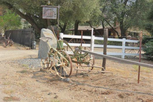 Button Willow Ranch In Drum Valley