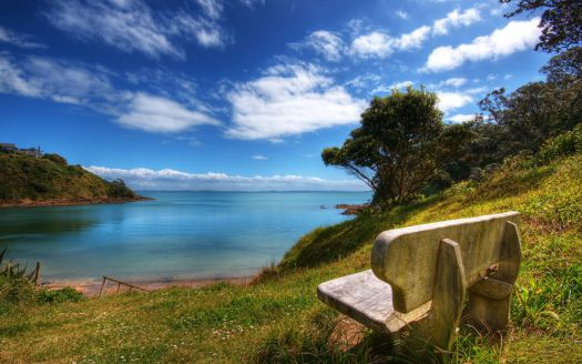 New-Zealand-Nature-Scenery