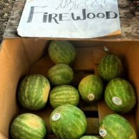 Watermelons-and-Fire-Wood