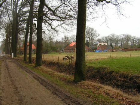 Friesland, Towns and villages, Bakkeveen.