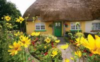 Cottage #2 Adare, Ireland