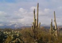 Dusting of snow on the Santa Catalinas