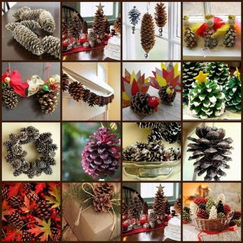 Fun with Pinecones