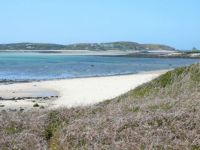 Tresco, Scilly Isles