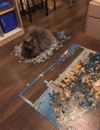 """So try and finish your puzzle now, Peasant! """""""
