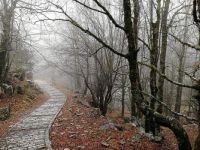 "Themes ""National Parks"" - Greece, Vikos Gorge trail"