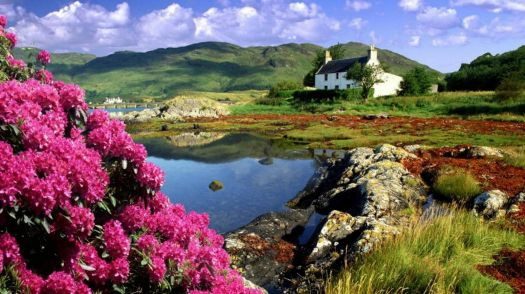 A Cottage in the Scottish Highlands