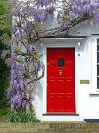 cottage-door-with-wisteria