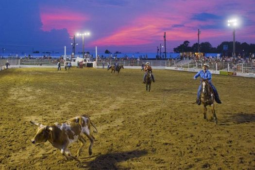 Cowboy Rodeo in New Jersey