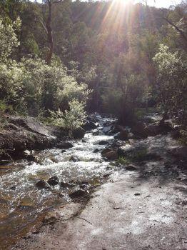 Morning at Lesmurdie Brook Western Australia