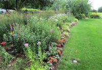 Teresa's Garden - 1