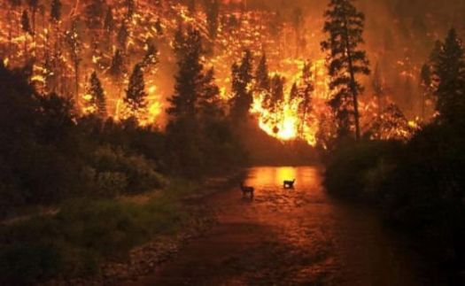 Solve High Park Fire, Colorado jigsaw puzzle online with 84 pieces