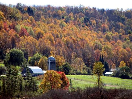 Changing of the leaves in Vermont