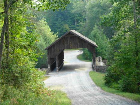 DSC00878 Du Pont State Forest, Hendersonville, NC