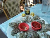 Oyster on half shell - Key West Florida