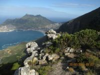 Hout Bay Harbour from Mountain, Cape Town
