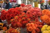 Flower Stall in Pike Place Public Market, Seattle, late August 2021