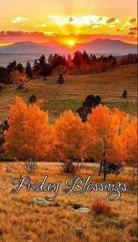 Good Morning - Friday Blessings!