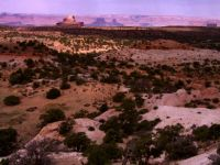 View from Aztec Butte, Canyonlands NP