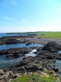 Scotland: Scurdie Ness Rock Pools