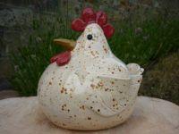 mijn kip