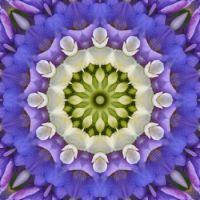 kaleidoscope 343 white and blue very large