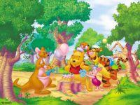 Winnie the Pooh 28
