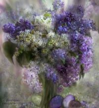 Easter lilacs