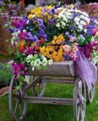 4.21 flower cart