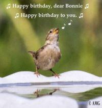 Quiz Question For Bonnie's Birthday