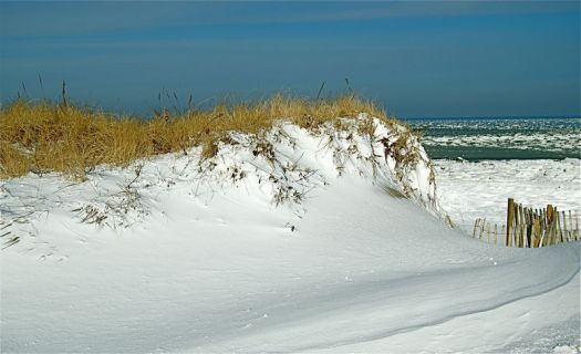 Snow on Cape Cod