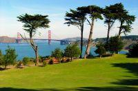 San Fran Scene