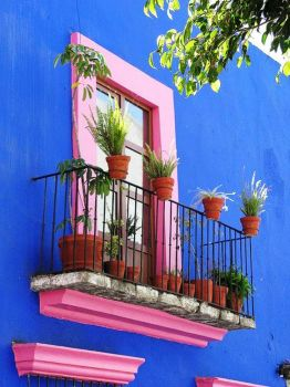 Potted Balcony 5