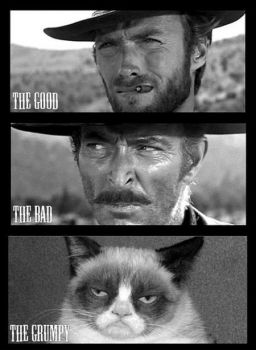 The Good--The Bad--The Grumpy