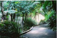 Roma st Parkland, Brisbane CBD.  Austraila.
