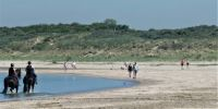 Part of the beach of Rockanje. This part is for people walking, dogs and horses.