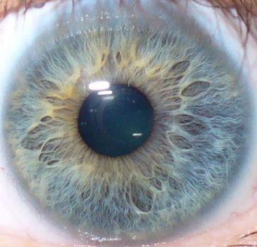 the eye of joot