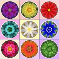 Friday Flower Bouquet3