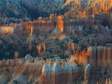 Light Play - Bryce Canyon