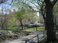 Central Park N.Y.