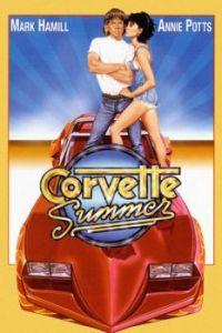 corvette-summer