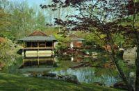 Japanese garden, Hasselt, Belgium