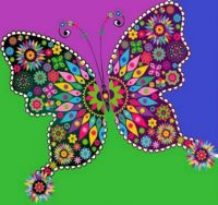 colors of a butterfly