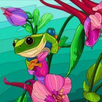 Frog on Columbine -  576
