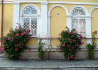 a house with roses