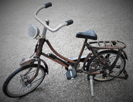 Indonesian bicycle model