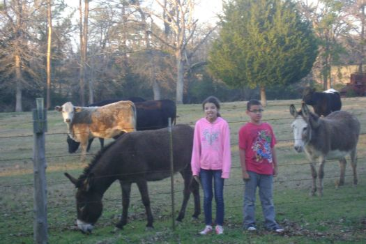 Kids having fun on the farm in East Texas